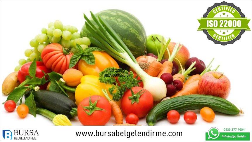 iso 2200 gıda güvenliği Yönetim sistemi